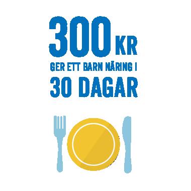 300 kronor