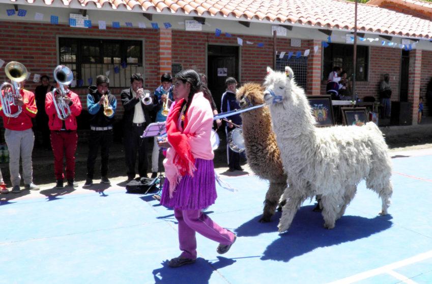 Lamadjuren är turistattraktioner i Bolivia. En flicka leder ett lamadjur medan andra ungdomar spelar blåsinstrument.